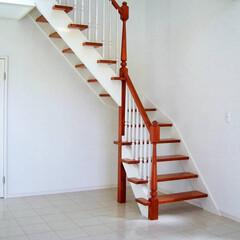 阿部興業株式会社/明るい空間/ストリップ階段/トリコロールカラー/白い家/栃木県 白い家 階段やキッチンにポイントの色  …(1枚目)