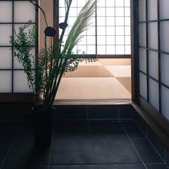 宇都宮市/栃木県/阿部興業株式会社/サイエンスホーム/木の家/土間のある暮らし/... 土間のある家 引き渡し前に、インテリアを…