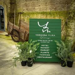 栃木県/下野市/コーヒー/吉田村ビレッジ/リノベーション/石蔵/... 石蔵を改装したお店 こちらでおいしそうな…(2枚目)