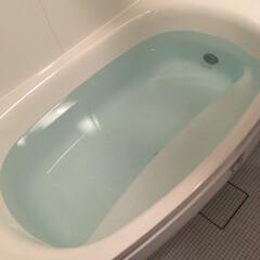 TOTOサザナ/お風呂場/フォロー大歓迎/おうち この浴槽の中のフチが本当に役立ちます。 …