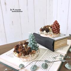 ディスプレイ/クリスマス雑貨/ツリー型キャンドル/アレンジ/木の実/ハンドメイド/... 100均の丸型の板に木の実をたっぷりアレ…(1枚目)