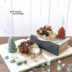 ディスプレイ/クリスマス雑貨/ツリー型キャンドル/アレンジ/木の実/ハンドメイド/... 100均の丸型の板に木の実をたっぷりアレ…(3枚目)