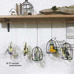 ディスプレイ/手作り雑貨/ドライアレンジ/鳥かご風/ワイヤー雑貨/ワイヤークラフト/... ワイヤーで鳥かごを作り中にドライをぶら下…