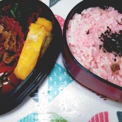 お赤飯/お弁当おかず/お弁当/おでかけ/暮らし/節約 いつかのお弁当~♪  コロナでさくら🌸は…