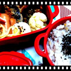 ボヌール/雑穀米/ナス/お弁当/節約/時短レシピ ボヌール弁当~♥♪  今日はナスのはさみ…