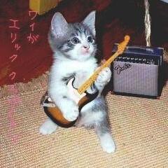 アイコン/ギター/猫ちゃん/合成/動物モチーフグッズ/暮らし/... 可愛くてお気に入り😍のねこたん! ギター…