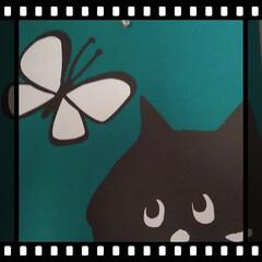 雑貨/カレンダーリメイク/7月/猫大好き/にゃー。/Né-net 今日から7月ですね〜  今年もあっという…