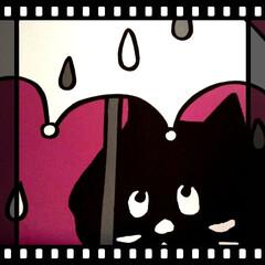 6月/カレンダー/猫ちゃん/動物モチーフグッズ/暮らし 今日から6月!  コロナの影響でカテキョ…