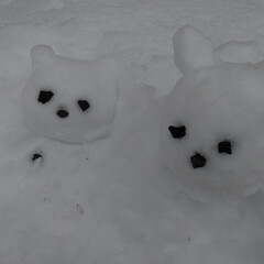 松本/雪遊び/雪かき/住まい/暮らし 3月も終わりだと言うのに 松本は雪が積も…