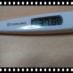 仕事/風邪/フォロー大歓迎/おでかけ/住まい/おやすみショット 仕事から上がったら、  微熱がありました…