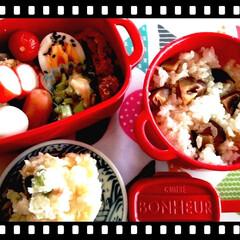 スプーン/ボヌール/ボヌール弁当/セリア/お弁当/雑貨/... 今日のお弁当~♪  久しぶりにお弁当を作…