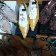 ミュールサンダル/パンプス/靴箱/ブランド/フォロー大歓迎/おでかけ/... 10代に買った、  卑弥呼という靴のブラ…