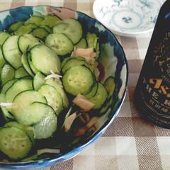 ホタテ/きゅうり/野菜たっぷり/おつまみ/暮らし/うちの定番料理 昨日のおつまみ🍺ー(・∀・)ー🍺  家で…