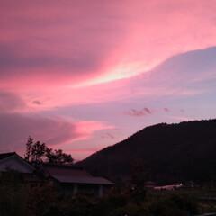 散歩/くも/夕日 今日の夕日  綺麗だなーとしばらく散歩~…
