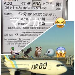 羽田空港/飛行機遅延 こんにちは😊 なんともう飛び立っているは…