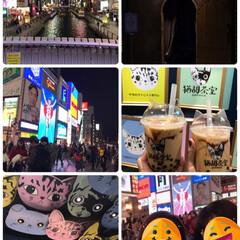 大阪 おはようございます😊  ついに大阪にやっ…