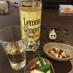 本日の酒/フード 本日の酒 レモンジンジャー サングリア …