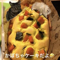 米粉のパウンドケーキ/夜な夜な菓子作り/リミアの冬暮らし おばんです〜😊 明日はお仕事休みなんで、…