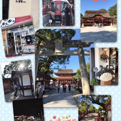 娘と二人旅/食べまくり呑みまくり/九州旅行 行ってまいりました〜 ついに九州に初上陸…(4枚目)