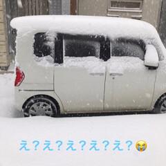 雪国あるある/リミアの冬暮らし/暮らし おはようございます😅☃️ 朝起きたら積も…