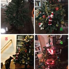 懐かしもの発見/Xmasツリー/クリスマス2019 おばんです😊 やっと🎄出しました💦 この…