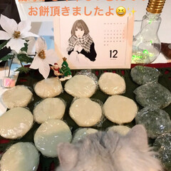 宮のかりまん、美味し/お餅/Xmasプレゼント/クリスマス2019 私にもXmas🎁が届きました😆🎵  ひと…