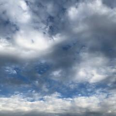 秋空 今日は一日晴れで、少し暑く感じました。空…