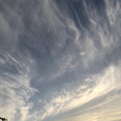 夕方の空   今日も暑い一日でした😵 夕方、日が沈…