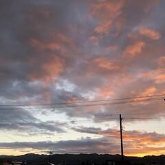 日の出 こんばんは。 体調が落ち着き、久しぶりに…