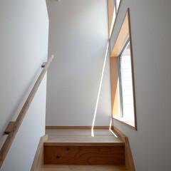階段/窓/フィックス/木製手すり 多世帯のコの字の家