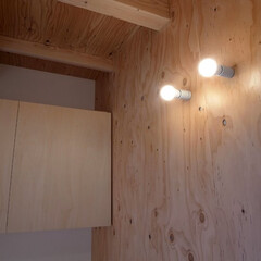 玄関/針葉樹合板/合板/ラーチ合板/モーガルソケット/玄関収納 多世帯のコの字の家