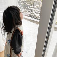 娘の成長/子育て/初雪 朝イチで雪が降ってると窓から雪を眺めるの…