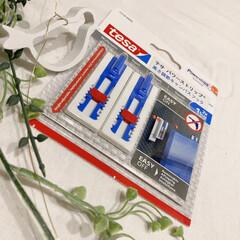 テサ パワーストリップ 高さ調節キャンバスフック | テサ  (ウォールフック)を使ったクチコミ「LIMIAモニタープレゼントに当選させて…」(1枚目)
