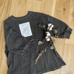ファッション/Tシャツ/しまむら しまむらでみつけたバックプリントが可愛い…(1枚目)
