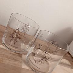 インテリア/ナチュラル/グラス/北欧/食器/カトラリー/... イオンでコーラを3本買うとグラスが一つ貰…(4枚目)