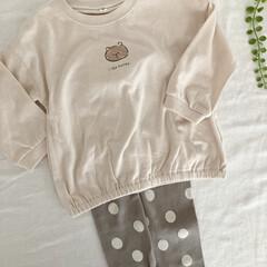 プチプラ/お揃い/くま/西松屋 西松屋購入品🧸🌿 姉妹で着せたいなと思い…(6枚目)
