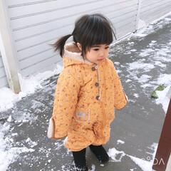 雪/暮らし/はじめてフォト投稿 今年初めて薄っすら雪が積もりました☃️ …