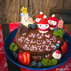 サンタケーキ/サンタクロース/お誕生日会/大家族/手作りケーキ/クリスマスケーキ/... ✏︎ 2019.01.31 ▫️ 1月の…