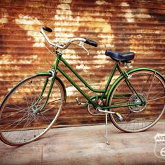アメリカンヴィンテージ/自転車/アンスタカタログ/suburban/schwinn/サバーバン/... 🇺🇸アメリカ買付 アメリカの国民的老舗自…