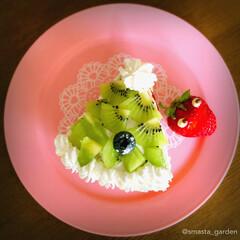 大家族/ツリーケーキ/ミルクレープ/ハンドメイドケーキ/手作りケーキ/ケーキデコ/... after Christmas🎅  今年…(2枚目)