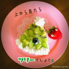 大家族/ツリーケーキ/ミルクレープ/ハンドメイドケーキ/手作りケーキ/ケーキデコ/... after Christmas🎅  今年…(3枚目)