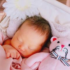 大家族/セルフ撮影/ママカメラ/アンティーク/新生児/ニューボーンフォト/... ☺︎生まれて5日目 のころ とってもポカ…(5枚目)