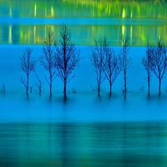 湖/水没林/白樺/ふくろう湖/夜明け前 Border of blue  凍てつく…