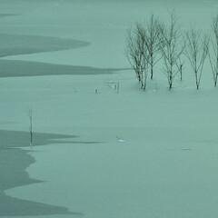湖/冬/氷/凍結/水没林/ふくろう湖 氷雪原野  The ice and sn…