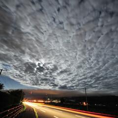 夜景/月夜/いわし雲 Wandering of night  …