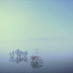 北海道/風景/当別町/ふくろう湖/夜霧/夜景 Catharsis of the nig…