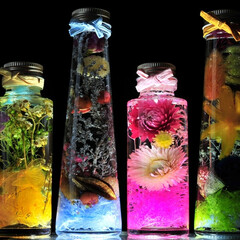 ハーバリウム/ボタニカル/手作り/ギフト/プレゼント/植物/... Lovely Botanicals gi…