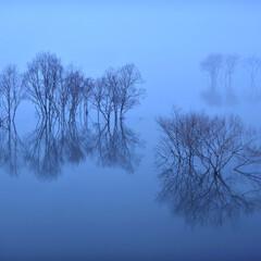 ふくろう湖/湖/夜景/月夜/濃霧/水没林/... 入賞しちゃいましたー^^/   第1回北…