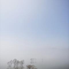 ふくろう湖/濃霧/夜景/月夜/水没林/風景/... 濃霧のカタルシス  Catharsis …