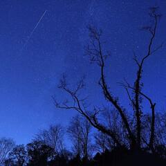 北海道/夜景/星空/流れ星 森と星のセレナーデ Serenade o…